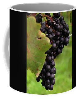 Shalestone - 9 Coffee Mug