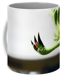 Sheffield. The Botanical Gardens Pavillions Coffee Mug