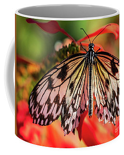 Shimmering In The Light Coffee Mug