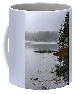 Ship Harbor Nature Trail, Acadia National Park Coffee Mug