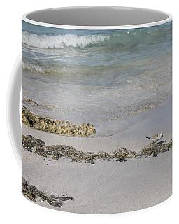Shorebird Coffee Mug