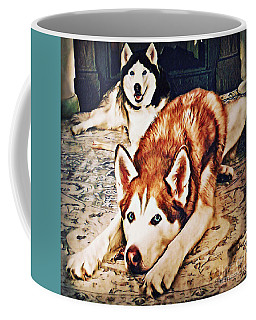 Coffee Mug featuring the photograph Siberian Huskies At Rest A22119 by Mas Art Studio