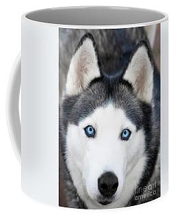Coffee Mug featuring the painting Siberian Husky Mask A91818 by Mas Art Studio