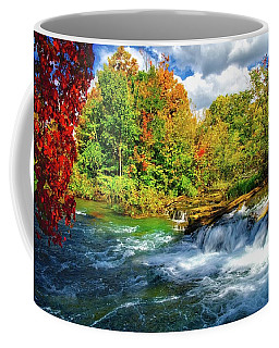 Coffee Mug featuring the photograph Sidelined Beauty by Lynn Bauer