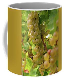 Silver Thread - 2 Coffee Mug