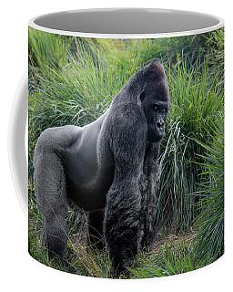 Silverback Stare 1806 Coffee Mug