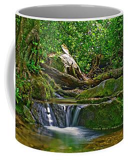 Coffee Mug featuring the photograph Sims Creek Waterfall by Meta Gatschenberger
