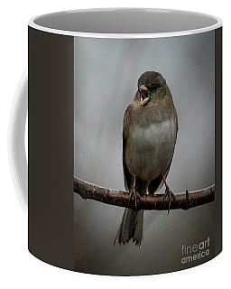 Singing Junco 1 Coffee Mug