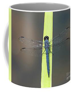 Slaty Skimmer Dragonfly Coffee Mug