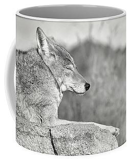 Sleepy Coyote Coffee Mug