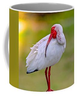 Sleepy Ibis Coffee Mug