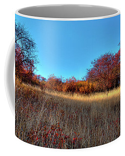 Coffee Mug featuring the photograph Sliver Of Sunlight by David Patterson