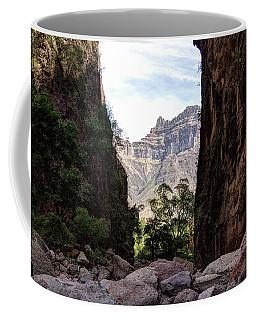 Slot Canyon Of Arroyo Hacienda Coffee Mug