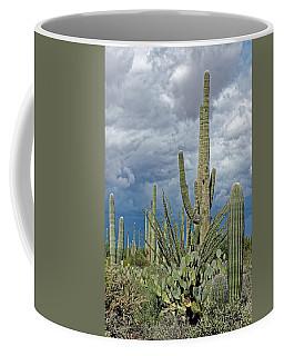 Slow Pokes - Sonoran Desert Coffee Mug