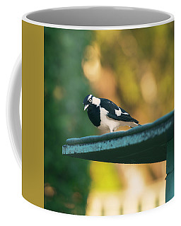 Small Magpie Lark Outside In The Afternoon Coffee Mug
