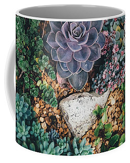 Small Succulent Garden Coffee Mug