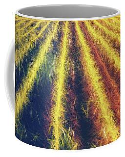 Coffee Mug featuring the photograph Smell Of The Corn by Jaroslav Buna