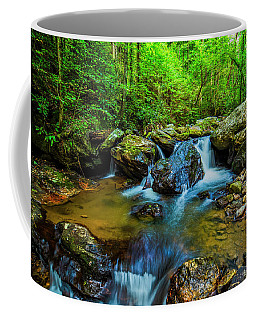 Coffee Mug featuring the photograph Smith Creek Cascade by Andy Crawford