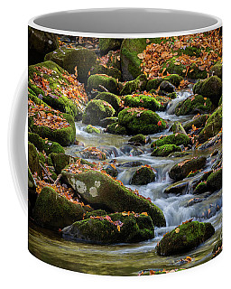 Smokey Mountain Cascades Coffee Mug