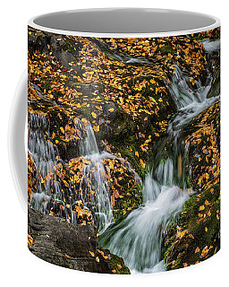Smokey Mountain Falls Coffee Mug