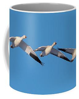 Snow Goose Trio Coffee Mug