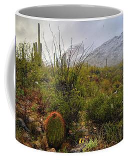 Snow In The Desert Coffee Mug