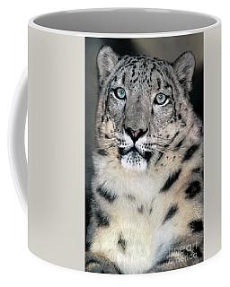 Snow Leopard Portrait Endangered Species Wildlife Rescue Coffee Mug