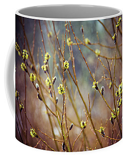 Snowfall On Budding Willows Coffee Mug