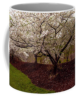 Coffee Mug featuring the photograph Snowy Cherry Blossoms by Ola Allen