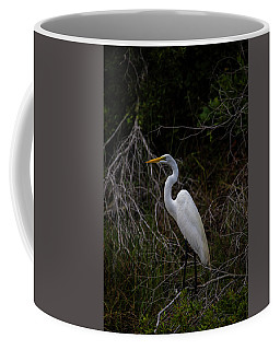 Snowy Egret On A Hot Summer Day Coffee Mug