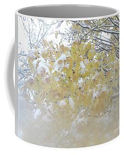 Coffee Mug featuring the photograph Snowy Maple by PJ Boylan