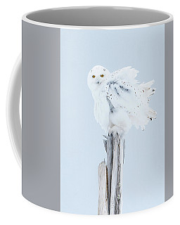 Snowy Owl Feather Shake Coffee Mug