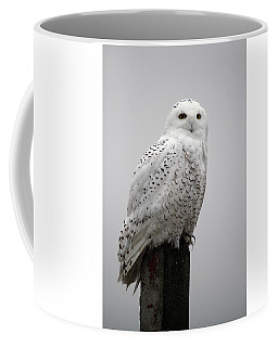Snowy Owl In Fog Coffee Mug