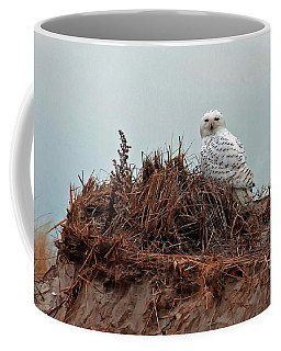 Snowy Owl In The Dunes Coffee Mug