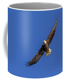 Coffee Mug featuring the photograph Soaring Eagle by Lori Coleman