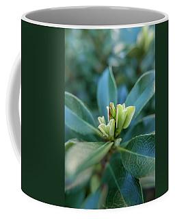 Softly Blooming Coffee Mug