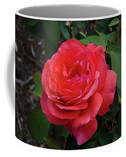 Solitary Rose Coffee Mug