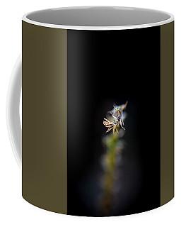 Somewhere In The Garden Coffee Mug