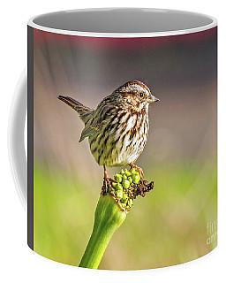 Songster Perching Coffee Mug