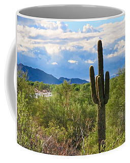 Sonoran Desert Landscape Post-monsoon Coffee Mug
