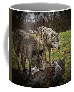 Sort Of Twins Coffee Mug