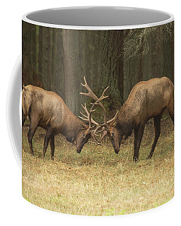 Sparring Coffee Mug