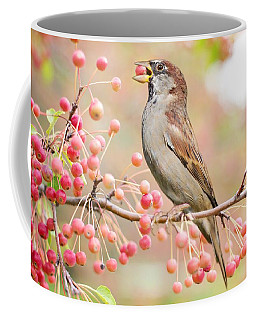 Sparrow Eating Berries Coffee Mug