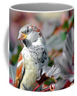 Sparrow Profile Coffee Mug
