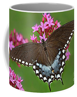 Spicebush Swallowtail Papilio Trollus Coffee Mug