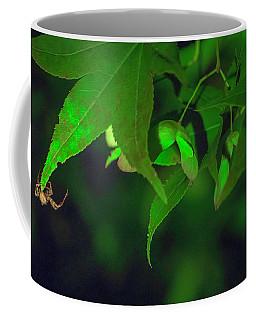 Spider At Night On A Leaf Coffee Mug