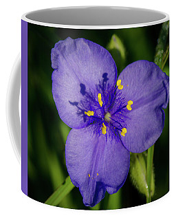 Spiderwort Flower Coffee Mug