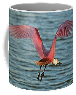 Spoonbill Maestro  Coffee Mug