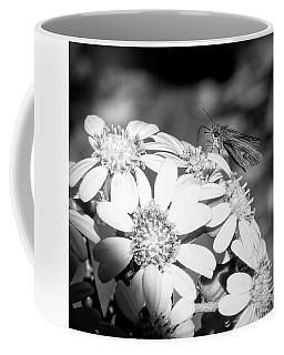 Spotlight To Pollinate Coffee Mug