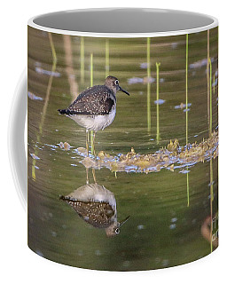 Spotted Sandpiper Reflection Coffee Mug